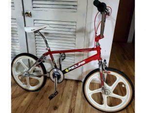 Redline RL-20 Vintage Bmx Bike