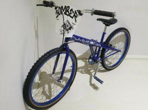 Rumblefish BMX Bike mid school bicycle